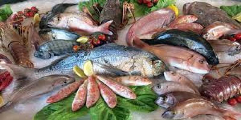 হৃদরোগ থেকে বাঁচাবে সামুদ্রিক মাছ।। ডা. সঞ্চিতা বর্মন